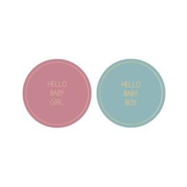 10x Sticker | Hello Baby Boy/Girl