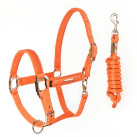 Halster + touw Venus oranje