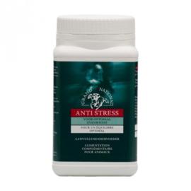 Anti-stress Grand national 1kg