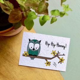 Bloom Kaart 'Hip Hip Hooray' (bloemen)