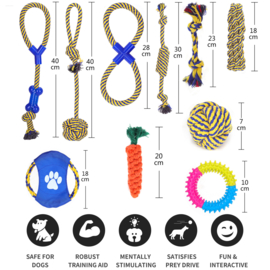 Speelgoedset (10 stuks)