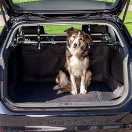 Autokleed voor in de kofferbak