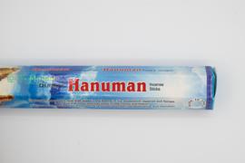 Darshan Hanuman