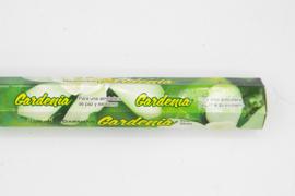 Darshan Gardenia