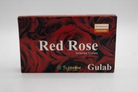 Darshan Red Rose