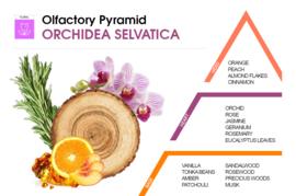 HygienFresh wasparfum Orchidea Selvatica 250 ml