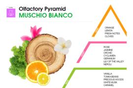 HygienFresh wasparfum Muschio Bianco 250 ml