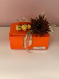 Oranje koffer