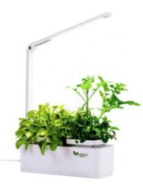 Vegger indoorgardening
