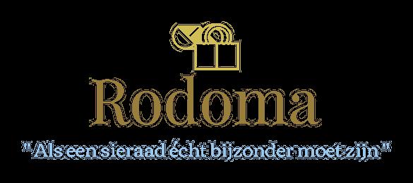 rvsring.nl
