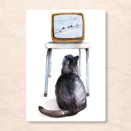 Postkaart Kat voor de TV, Zintenz