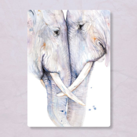 Postkaart Olifanten, Zintenz