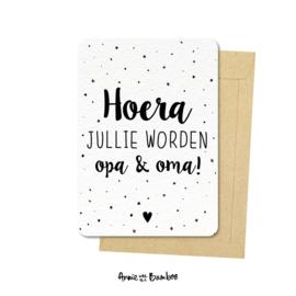 Ansichtkaarten 'Hoera jullie worden opa & oma!' - per 5 stuks
