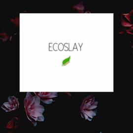 ECOSLAY & TERRE DE COULEUR eco/cg