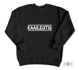 Kinder sweater 'kaaileutig'
