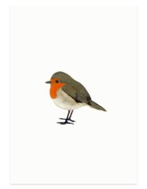 Roodborstje (vogelkaart)
