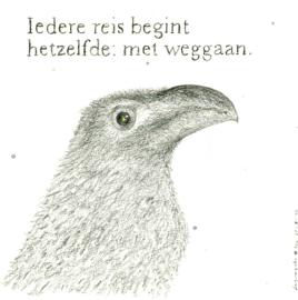 Rogier Cornelisse / Iedere reis begint..