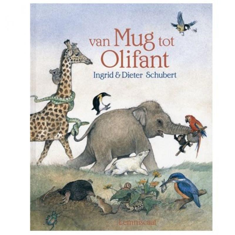 Van mug tot olifant / Ingrid Schubert