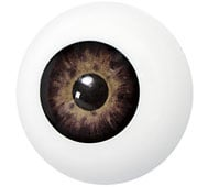Kunststof oog bruin