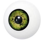 Kunststof oog groen