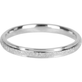 Charmin*s Ring Sanded And Shiny Steel R563