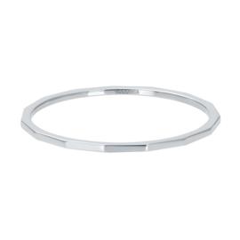 iXXXi Vulring 2 mm Angular Zilver