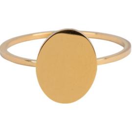 Charmin*s Modern Oval Gold Steel R715