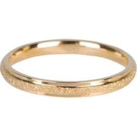 Charmin*s Ring Sanded And Gold Steel R564