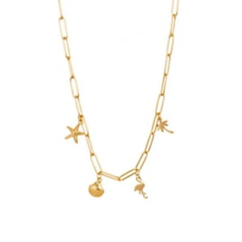 Collier Necklace With Charms 40 cm Goud