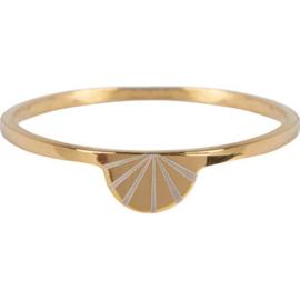Charmin*s Modern Rainbow Gold Steel R731