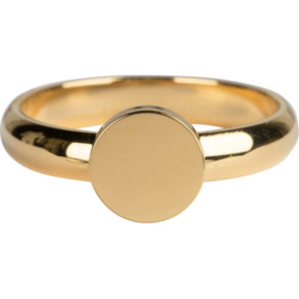 Charmin*s Ring Pudgy Seal Ring Round Gold Steel R827