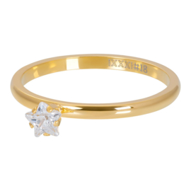 iXXXi Vulring 2 mm Star Crystal Stone Goud