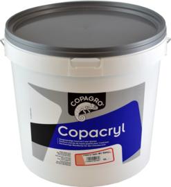 MUURVERF - COPACRYL SATIN 1L***