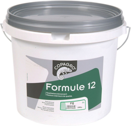 MUURVERF - FORMULE 12 5L