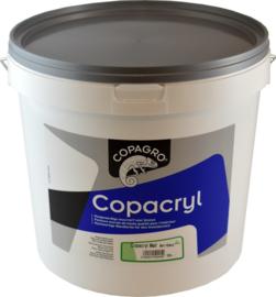 MUURVERF - COPACRYL MAT 1L***