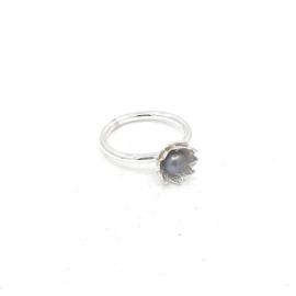 Zilveren ring met grijze parel.