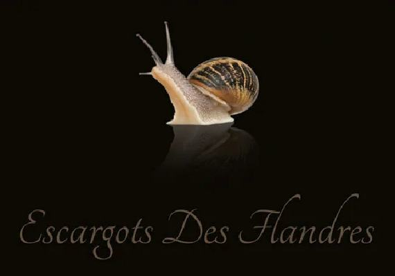 EscargotsDesFlandres