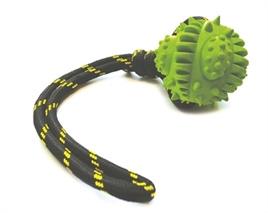 Happy pet bal aan touw