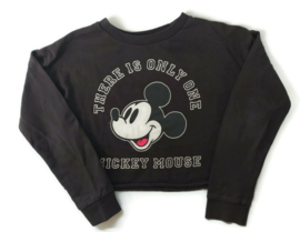 140 - H&M korte sweater