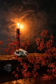 Rabbit Skull and Candle light, ringen in de hoeken.