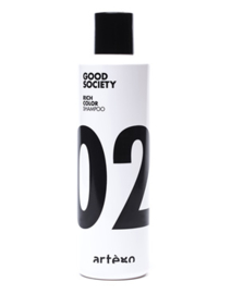 02 Color Shampoo 250ml