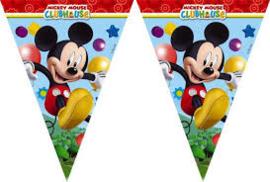 Vlaggenlijn ''Mickey mouse'' (2.3 meter)