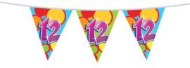 Vlaggenlijn ''12 jaar'' (10 meter)