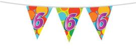 Vlaggenlijn ''6 jaar'' (10 meter)