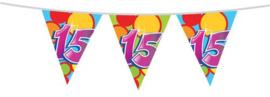 Vlaggenlijn ''15 jaar'' (10 meter)