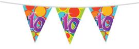 Vlaggenlijn ''10 jaar'' (10 meter)