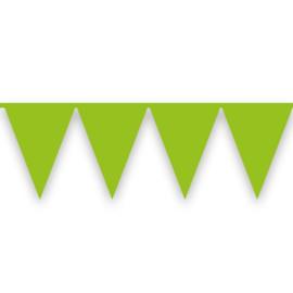 Vlaggenlijn lichtgroen (10meter)