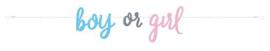 Letterslinger ''Boy or Girl'' (213 cm)