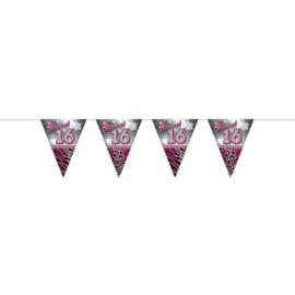 Vlaggenlijn ''Sweet 16'' (10 meter)