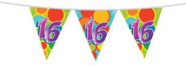 Vlaggenlijn ''16 jaar'' (10 meter)